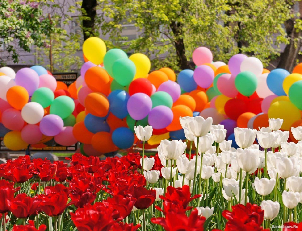 картинки шариков с праздником сюда